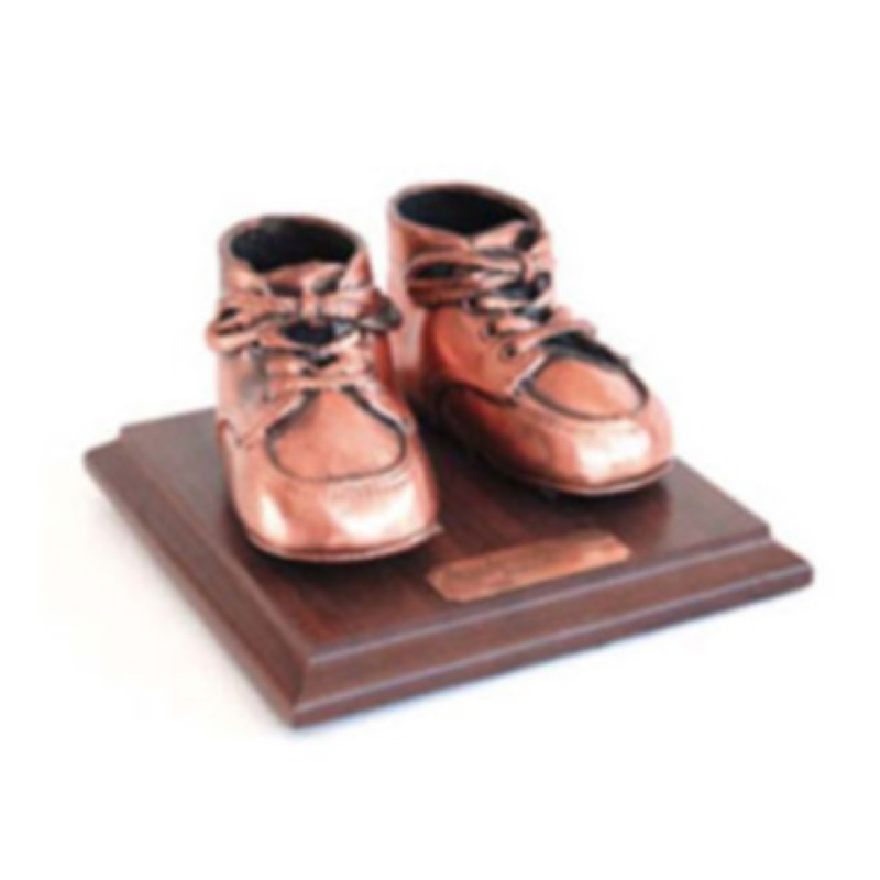 Bronzed Shoe
