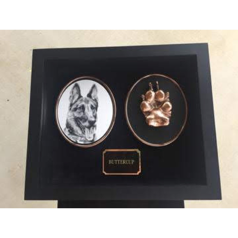 medium shadowbox pet with artist